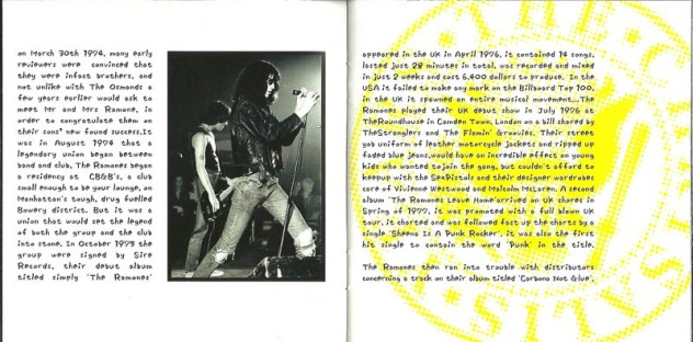 Ramones - 2002 The Chrysalis Years Anthology 5
